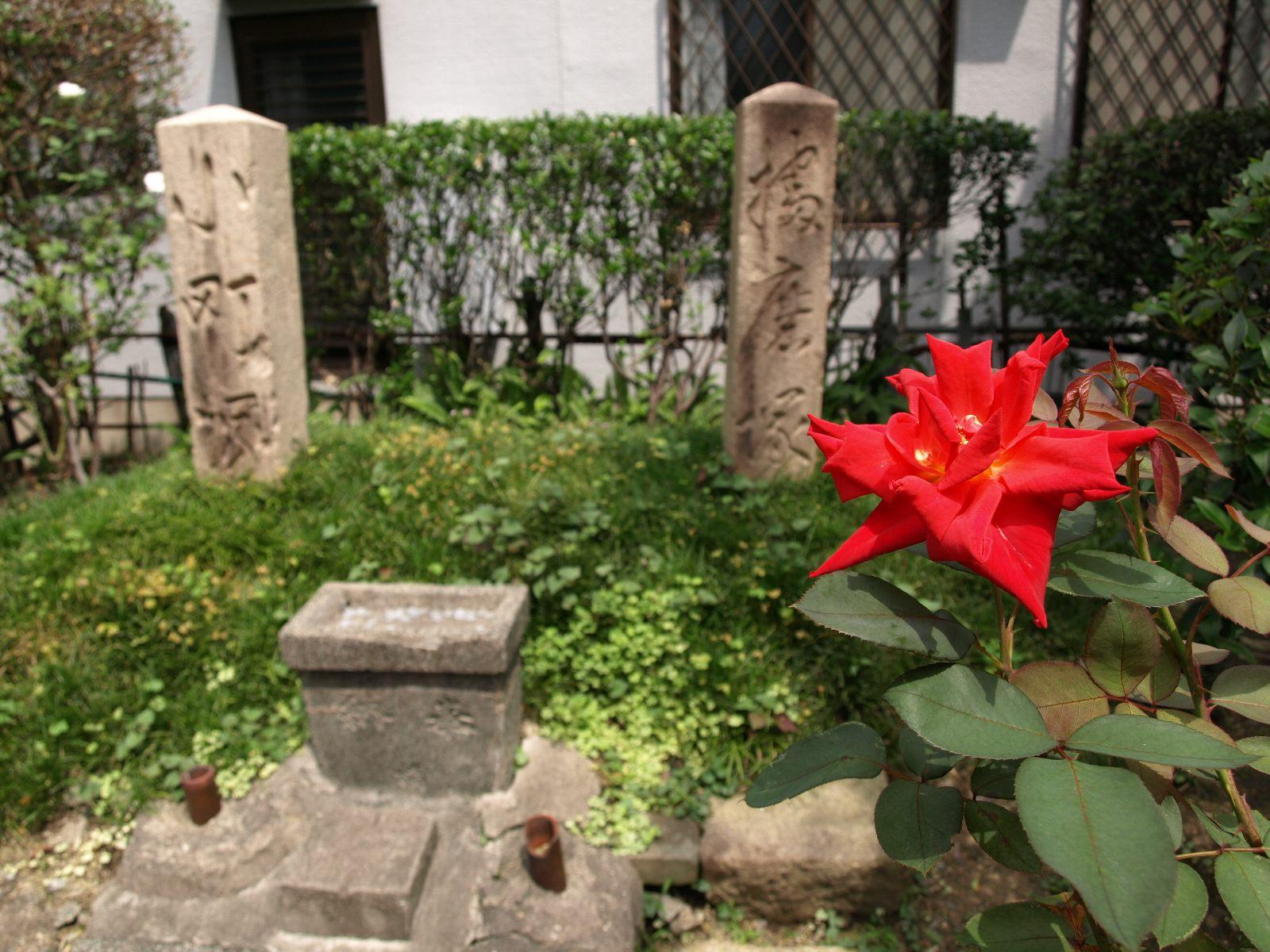 播磨塚と小町塚-その1