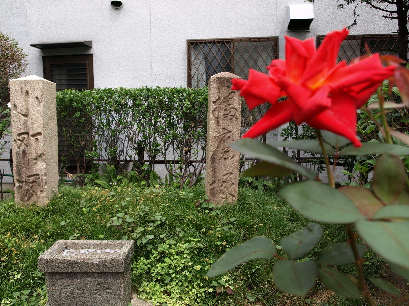 播磨塚と小町塚-その3